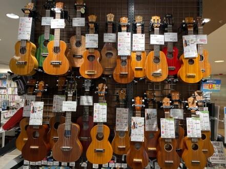 夏の大人気な楽器と言えばウクレレ!この夏から始めませんか?