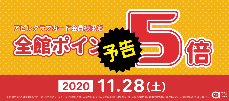 11/28(土)全館ポイント5倍